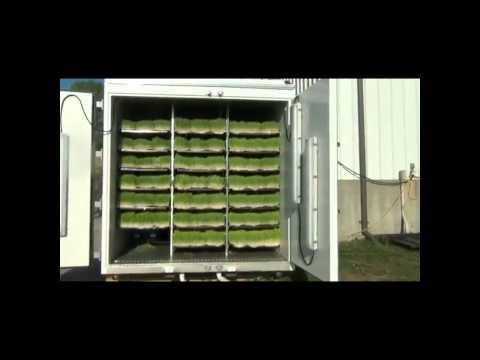 Гидропонная установка для корма
