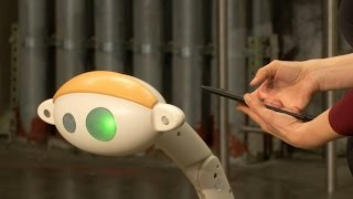 Could This Robotic Helper Become a Common Sight on a Sidewalk Near You?