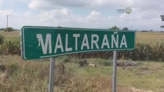 Encuentran en Jamay al menos doce cuerpos de personas de Jalisco