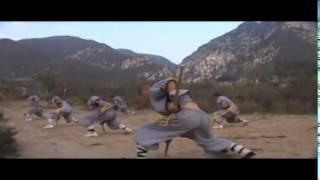 The real shaolin kung fu