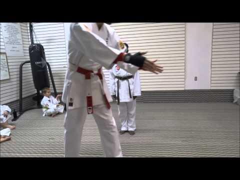 Alanna's katas for 2nd Kyu brown belt testing