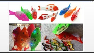 Amazing Tilapia Fish Toy Red, Orange, Green and Pink Fish Toys  | Fish Toys for Kids Review