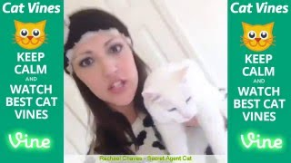 Ultimate Cat Vines Compilation #2 - April 2016