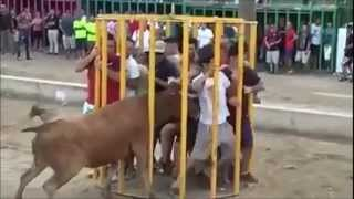 MOST FATAL BULL ATTACKS - MUST SEE