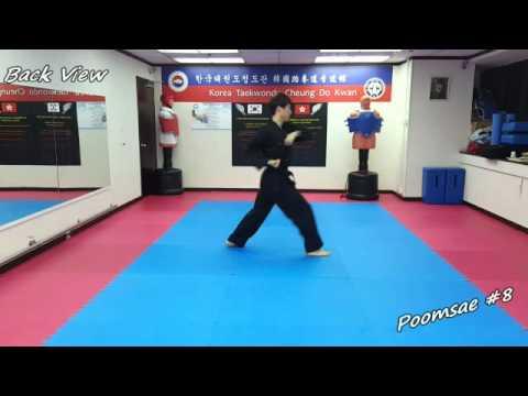 Xxx Mp4 Taekwondo Poomsae 8 Pal Jang Slow Motion Mirror 3gp Sex