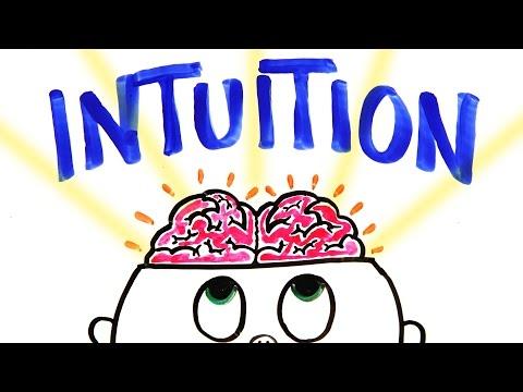 Should You Trust Your Gut Instinct