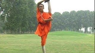 Shaolin flexibility&balance (tongzi) kung fu: meditative form