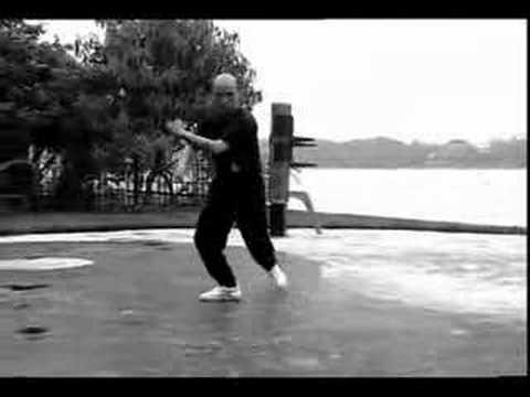 Downloads My Way of Wing Chun