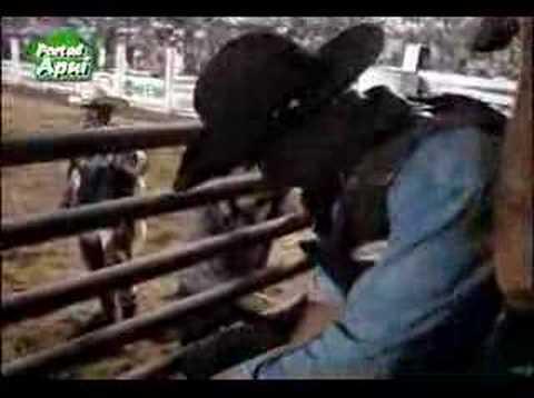 Melhores momentos da montaria em touros na xx expoap