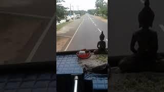 Anurada pura trip