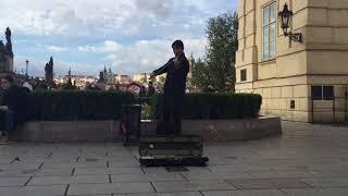 Street Violinst Near The Charles Bridge