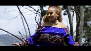 Helen Pawlos ( የወሎ ልጅ) New Ethiopian Amharic Music 2019 (Official Video)