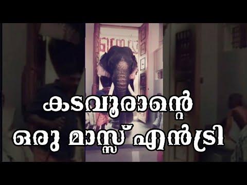 Xxx Mp4 Thrikkadavoor Sivaraju Mass Entry Audio Poothan Aattam 3gp Sex