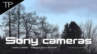 Sony camcorder comparison & HDR-CX625 quick test