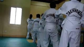 ervon's taekwondo