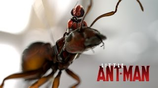 LITTLE ANT-MAN