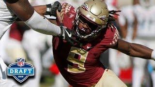 Josh Sweat NFL Draft Tape | FSU DE