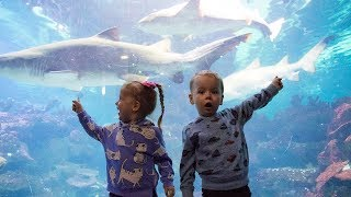 Gaby and Alex visiting Aquarium. Family Fun for kids