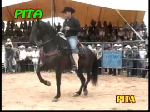 ¡¡De Lujo Rcho La Candelaria VS La Jefe de Jefes En La Caja Michoacan
