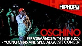Oschino & Neef Buck Perform