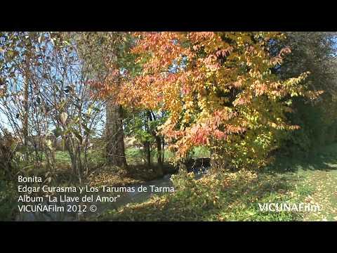Bonita Edgar Curasma y Los Tarumas de Tarma VIDEO OFICIAL