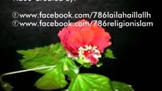 ইসলামিক হামদ,নাত