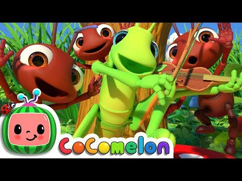 Xxx Mp4 The Ant And The Grasshopper CoCoMelon Nursery Rhymes Amp Kids Songs 3gp Sex