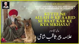 Kutte ne Allah ﷻ ke Aabid se baat kar ke kya sikhaya? - Pir Saqib Shaami