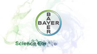 Bayer Brand Logo Clip