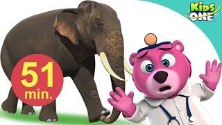 हाथी मेरा साथी आया | Hathi Mera Sathi Aaya | Hindi Children Rhymes | 51 Min Compilation