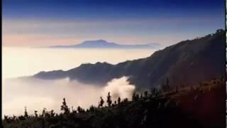 Open Road - Gede Robi