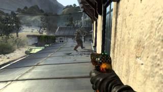 PG-AnlmaL - Black Ops II Game Clip
