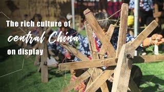 Live: The rich culture of central China on display丰收节进行中 一睹河南农耕文化