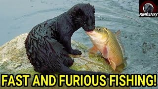 Fast and Furious Fishing with Black Mamba!