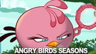 Angry Birds Seasons  Meet the Pink Bird