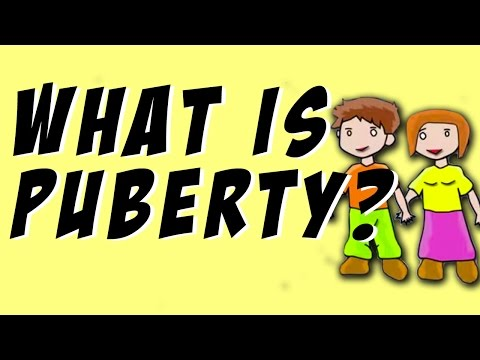Puberty Explained - What Is Happening To Your Body? - Animated Infographic