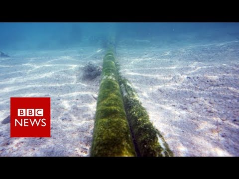 Russia a risk to undersea cables defence chief warns BBC News