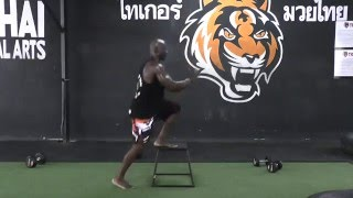 Power and Explosive Workout for Muay Thai and MMA