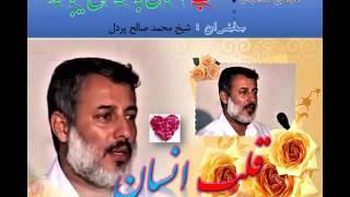 قلب انسان به سه نوع میباشد  شیخ محمد صالح پردل  Mohammad Saleh Pordel