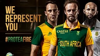 This is #ProteaFire