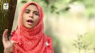 Song: Misti Kothay gaan Shuniye - Misti shurer Resh | Islamic Song by Uchcharon & Sosas