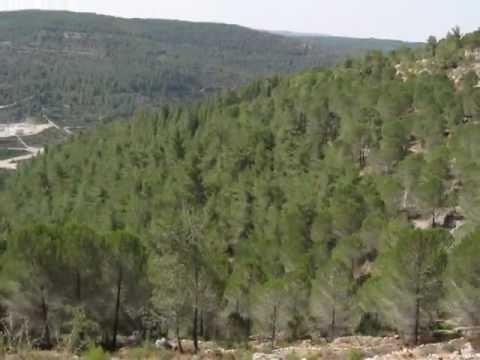 ISRAEL JRUSALEM -HIKING HAR EITAN -SATAF