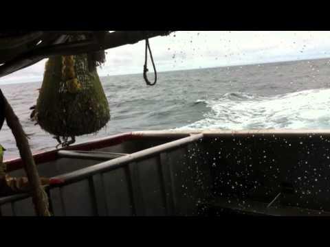 peche dans le Golf de Gascogne