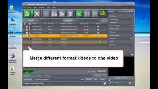 mediAvatar Video Converter - how to convert AVI MPEG MKV WMV FLV 3GP MP4 videos...