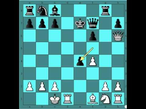 Klasican primer zrtvovanja figura u sahu WALBRODT vs LOEW Kraljev gambit 542