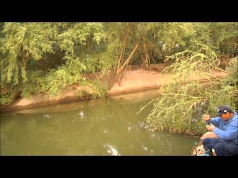 Pescuit intre copaci
