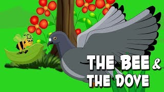 English Stories For Kids | The Bee And The Dove | Bedtime Stories For Babies By Aanon Animation