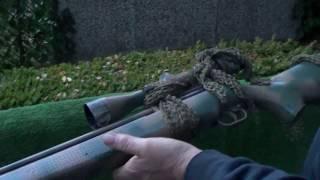 webley rebel , air rifle