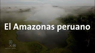 Mi primerza vez en el Amazonas!!   Alan por el mundo