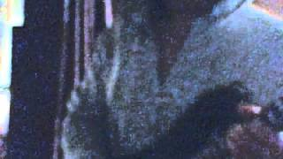 Webcam video from October 30, 2012 2:03 PM